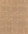 Nile ceralatte 0197 medium cropped