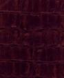 Nile prugna 0738 medium cropped