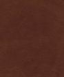 Pista brown medium cropped