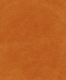 Pista mandarin medium cropped