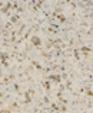 T16 mars colours hi macs n7hcclvx f medium cropped