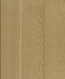 Goldenmoon medium cropped