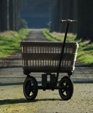 Wagon1 medium cropped