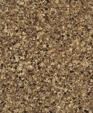 Swatch 1720 medium cropped