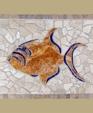 1116874944 191129 triger fish lg medium cropped