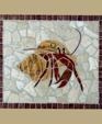 1116873290 183944 hermit crab lg medium cropped