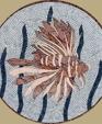 1115657195 250186 lion fish lg medium cropped