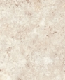 17270 detail.ashx medium cropped