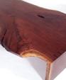 Main manta medium cropped