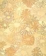 Aster orangeyellow medium cropped