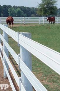 "Centaur HTP5"" Rail Horse Fencing on Designer Page"