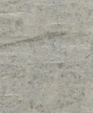 1027 lg medium cropped
