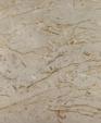Harvest beige polished marble web1 medium cropped