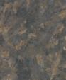 P 211 1 medium cropped