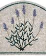 Lavenderpanel medium cropped