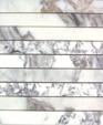 Plankcalacattam medium cropped