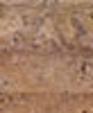Scabosp12rmm medium cropped