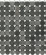 Spinbluelagosm medium cropped