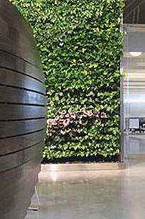 Organtex Wall on Designer Page