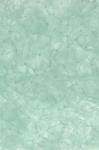 Bio Glass on Designer Page