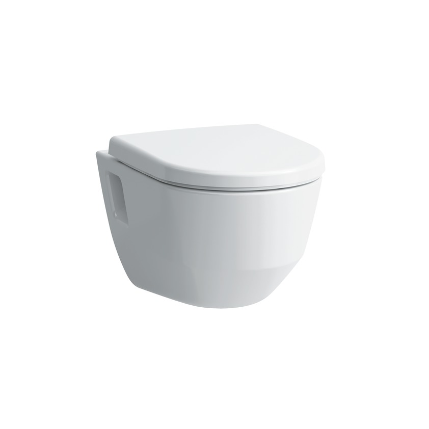 820964 wall hung wc  rimless  washdown  with niches 0
