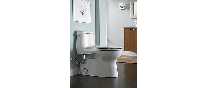 https://designerpages.s3.amazonaws.com/assets/62033751/MS614114CEFG_01_Carlyle__II_One_Piece_Toilet__1_28_GPF__Elongated_Bowl_3.jpg