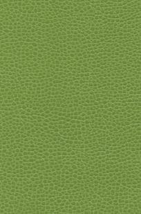 Promessa® Scallion - 363-4481 on Designer Page