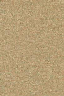 Harmonium xf2™ Commercial Linoleum Flooring on Designer Page
