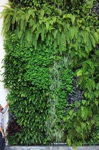 Custom Built-In Living Walls on Designer Page