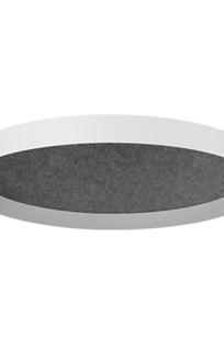 Skydome Edge Acoustic 2', 3', 4' - Surface Mount on Designer Page