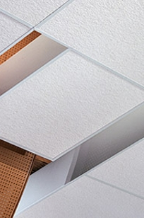 USG Ceilings Astro ClimaPlus Acoustical Ceiling Panels on Designer Page