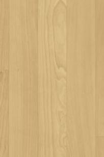 Acczent Wood Acoustiflor on Designer Page