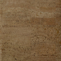 Designer Pages: Cork Wallcoverings Page