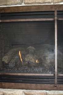 Face It. Fireplace doors for wood and gas fireplaces. on Designer Page
