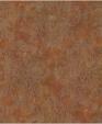 Wn2498x xl medium cropped
