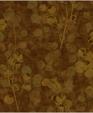 Av80905 xl medium cropped