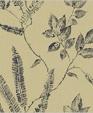 Av81802 xl medium cropped