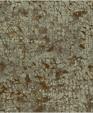 Fx81308 xl medium cropped