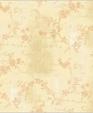 As4551 xl medium cropped