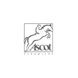 Ascot sq160