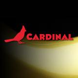 Cardinalpaint