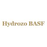Hydrozo basf sq160