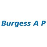 Burgessceilings sq160