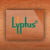 Lyptus sq160