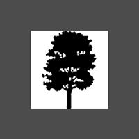 Architectural veneers logo 20