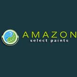 Amazonpaint sq160