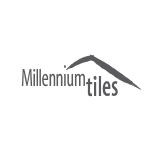 Millenniumtiles sq160