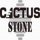 Cactus stone sq160
